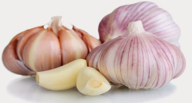 garlic_185682006