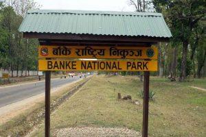 banke-national-park-