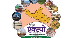 pradesh expo